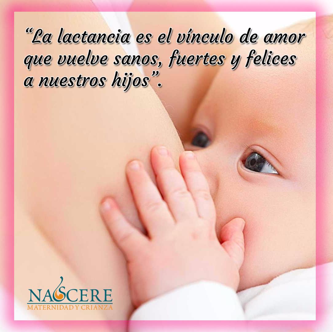 10 Frases De Lactancia Materna Nascere Maternidad Y Crianza